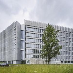 GreenWings-Office-3